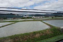 Farmlands in Kansai