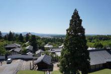 View from the veranda in Nigatsudo
