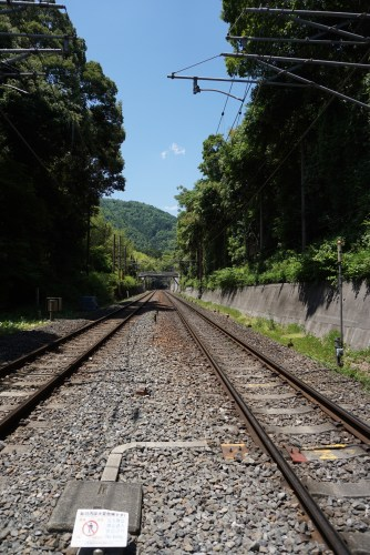 The train tracks that cuts Arashiyama Bamboo Grove into 2 parts
