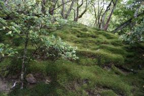 The moss gardens in Ginkakuji