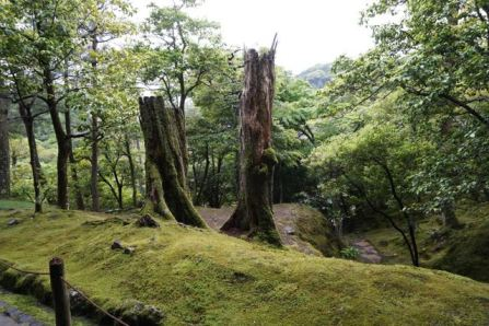 Walking up the hill in Ginkakuji