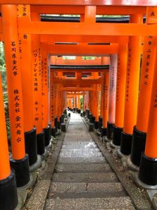 Some of these torii gates are newly installed