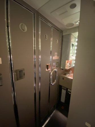 The clever use of large mirrors in the lavatories makes it feel large than it is
