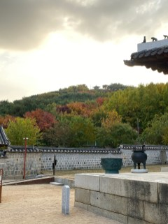 We got a great view of the autumn trees at the annexe of Hwaseong Haenggung