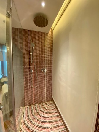 Walk-in shower stall
