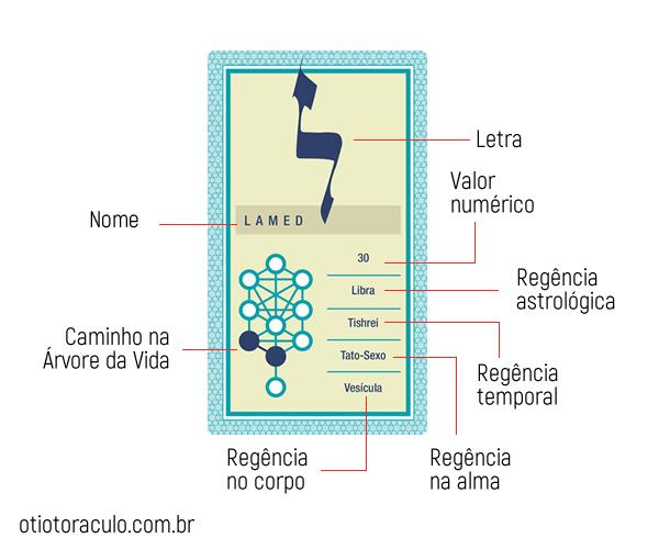 estrutura do otiot