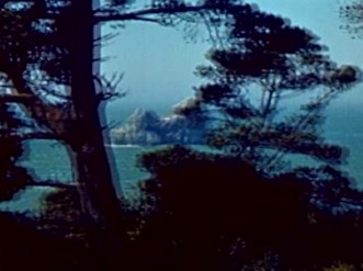 Trees - Sea