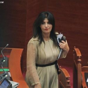 Zbardhet marrëveshja, flet kritikja e Bashës në PD. Topalli: Interesante, hyrja në zgjedhje ajo që doja…!