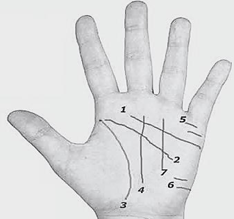 el fali nasil bakilir el cizgilerin