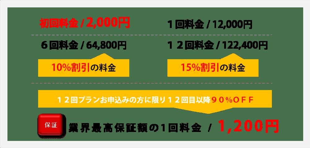 胸脱毛料金説明初回2000円
