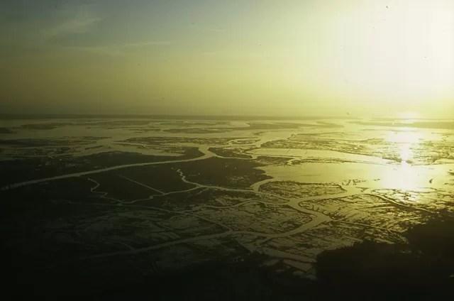 Mais de 80% dos habitats de zonas húmidas ameaçados em Portugal