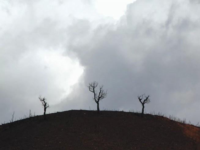 Riscos após incêndios devem ser prevenidos: erosão, degradação dos solos e poluição da água