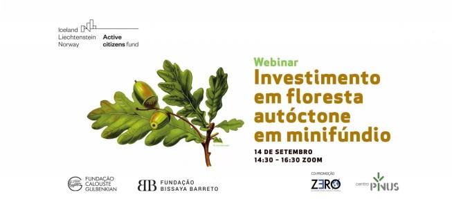 """Webinar """"Investimento em floresta autóctone em minifúndio"""" marca o arranque do projeto ForestWatch"""