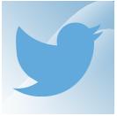 twitter wp plugin