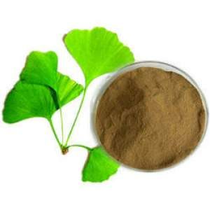 Ginkgo Biloba Leaf Extract -How to Lose Stress Weight: Cortisol and Weight Gain