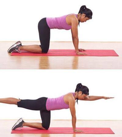 Bird Dog Core Workouts Routine