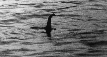 Loch Ness Monster - possibly Steve, you don't know