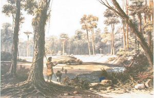 Earle_Native_Village_and_Cowdie_Forest_Earle_Augustus