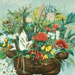 9907_Vintage_Native_Flowers_of_New_Zealand_Poster