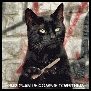 our-plan-is-coming-together