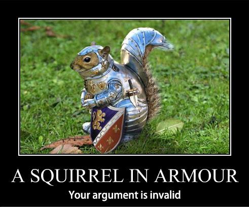 squirrel-in-armour-argument-invalid