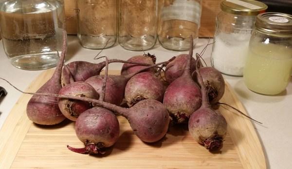 water beets salt whey