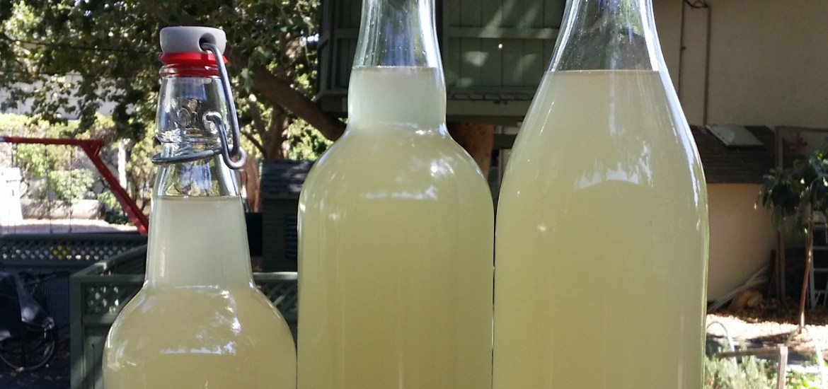 bottled ginger beer