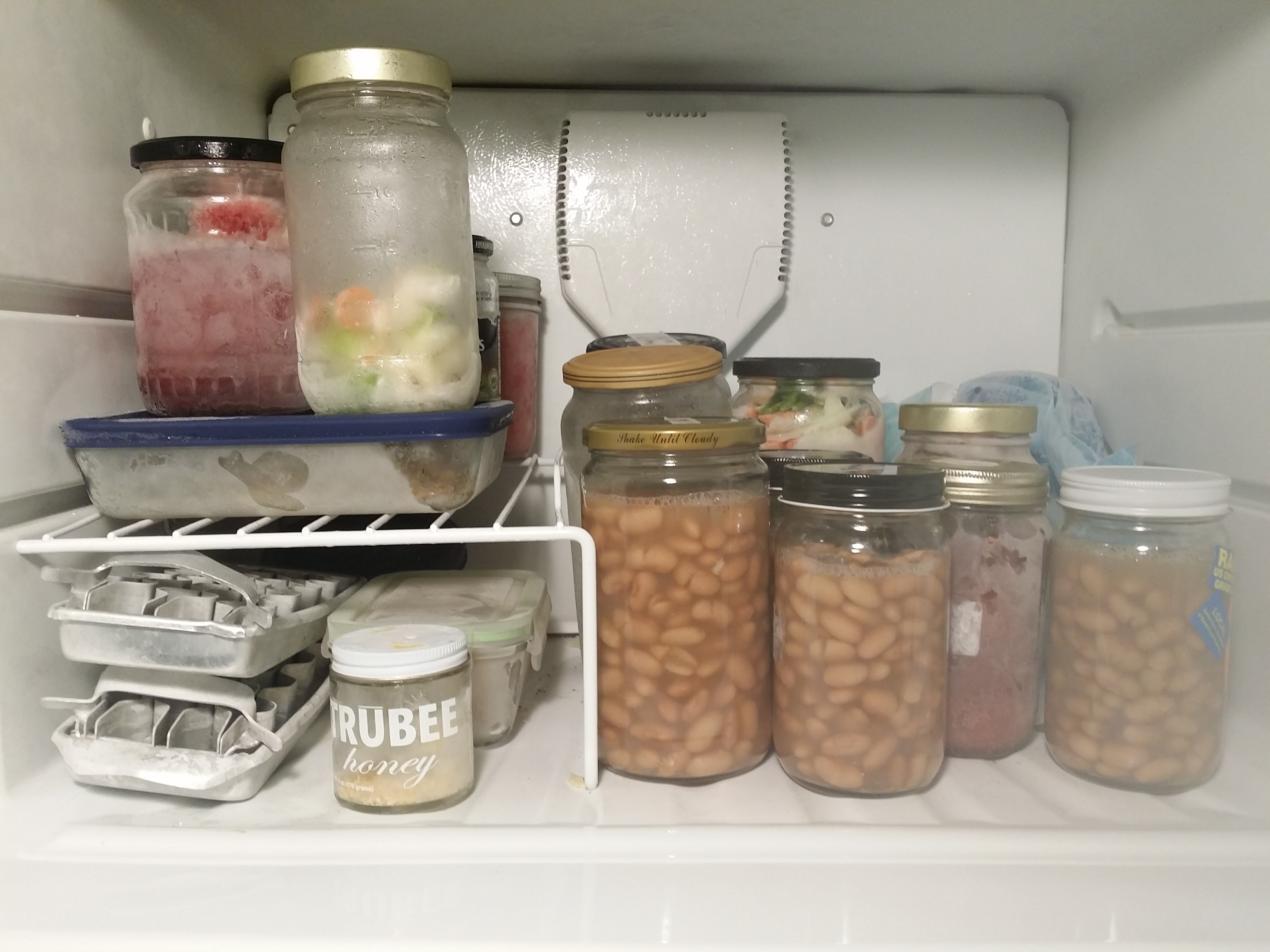 Beans freezing on the right-hand side & How to Freeze Food Without Using Plastic - The Zero-Waste Chef