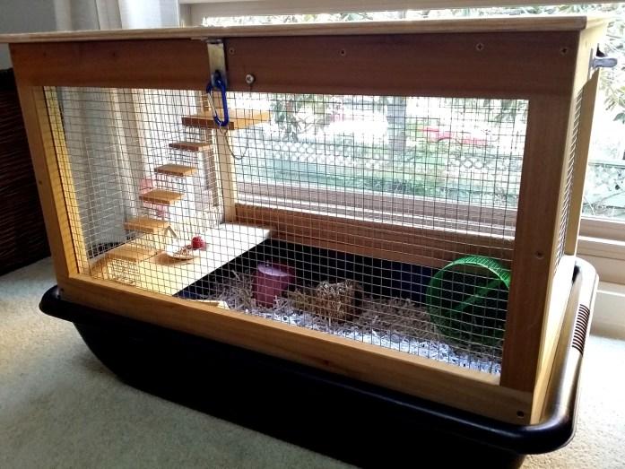 hamster-mansion