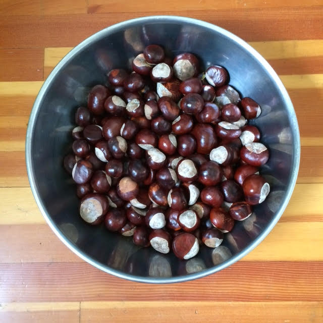 bowl-of-chestnuts