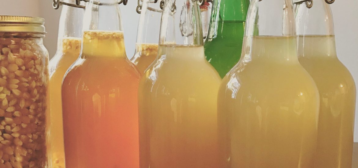 kombucha and ginger beer
