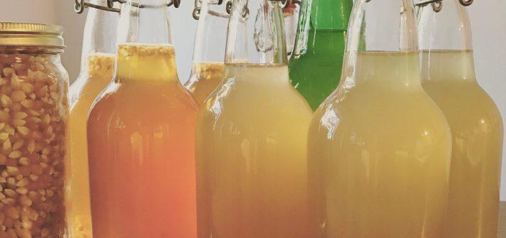 kombucha and ginger beer