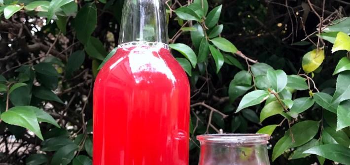Hibiscus natural soda