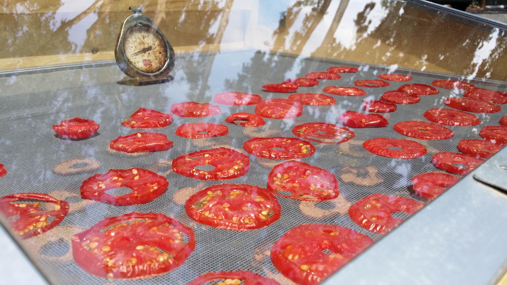 Solar Dried Tomatoes Zero Waste Chef