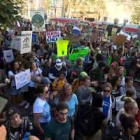 Ask Anne Marie: How Can I Support the Climate Strikes?