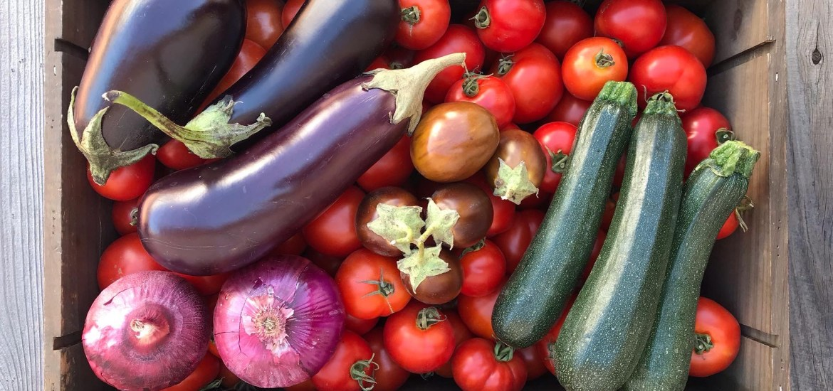 wooden crate filled with seasonal produce of tomatoes, eggplant, red onions and zucchini