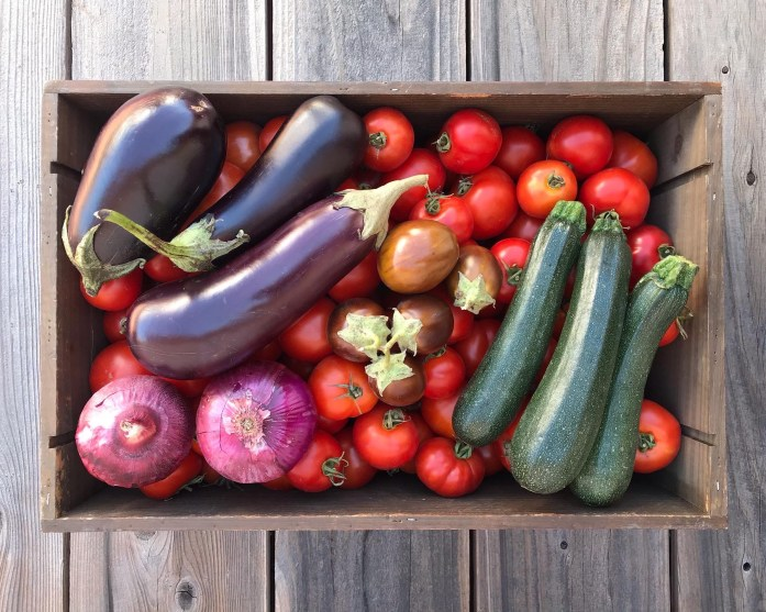 Wooden crate filled with seasonal produce of tomatoes, eggplant, red onions and zucchini. Seasonal vegetables cost less than imported vegetables and make more frugal dinners.