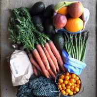 The (Literal) Ins and Outs of Curbside Composting