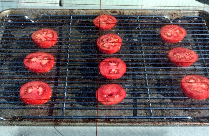 using the car as a solar dehydrator to dehydrate tomato slices