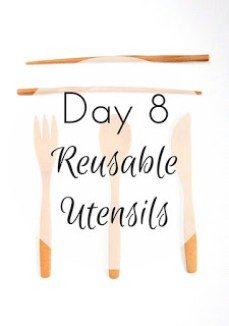 http://www.zerowastenerd.com/2016/01/30-days-to-zero-waste-day-8-bring-your.html