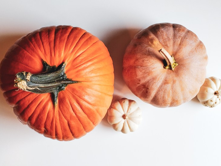 How to Reuse Halloween Pumpkins