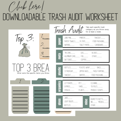 Trash Audit Worksheet