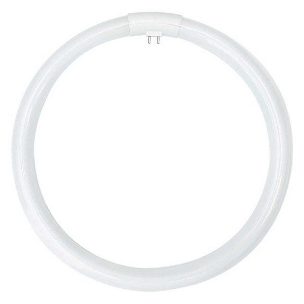 T5 Cirkellysrör 2XG13 22-60W
