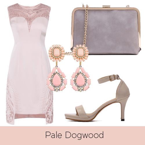 pale-dogwood-2