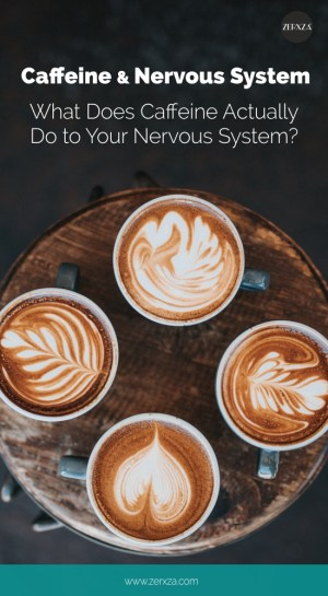 Caffeine and Nervous System - What Does Caffeine Do To Your Brain