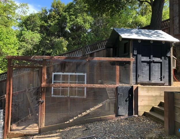 Chicken coop designed for location.