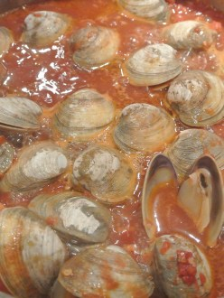 Simmering Clams