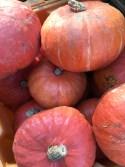 FM Pumpkins