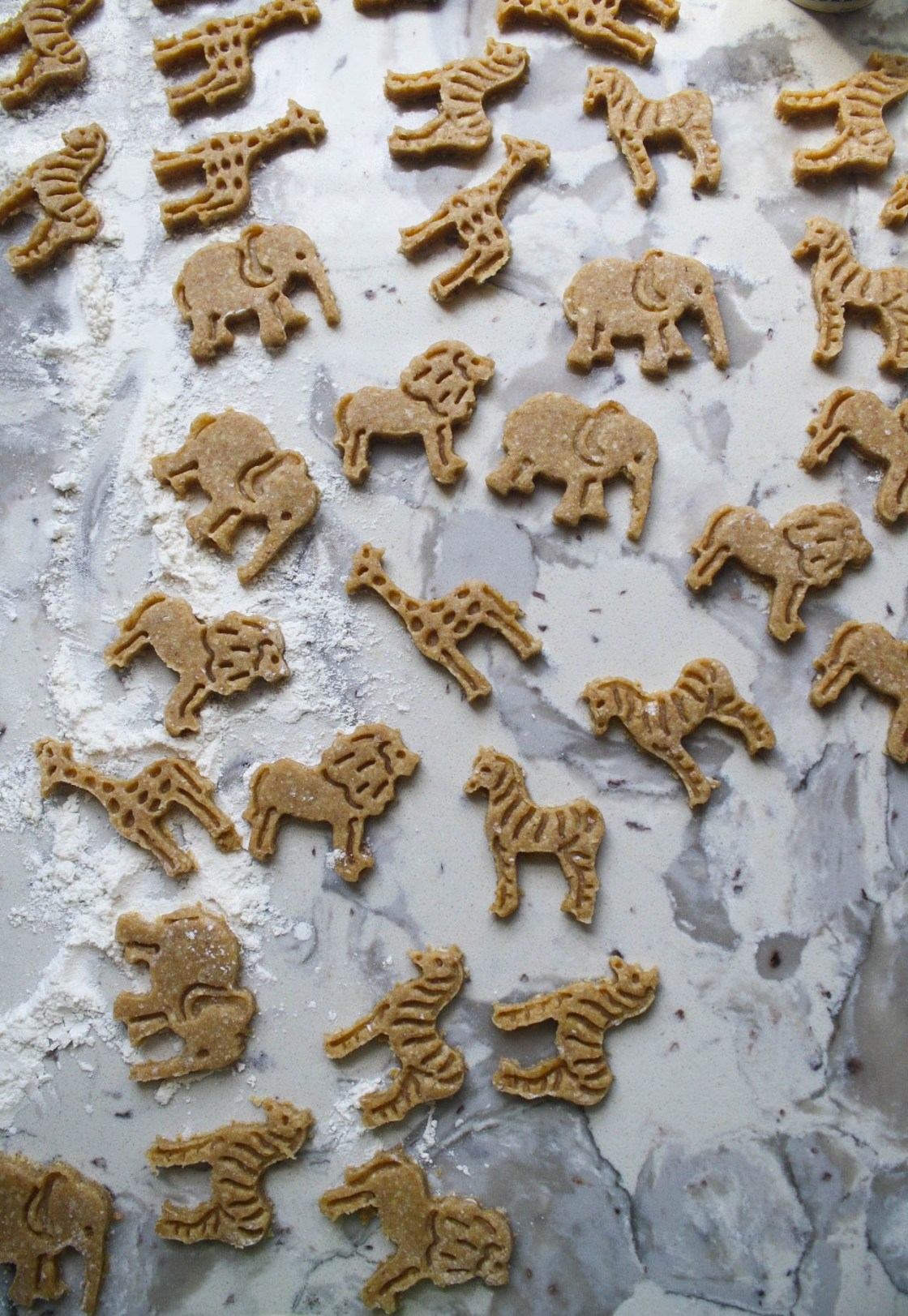 Whole Grain Animal Cracker Cookies | Zestful Kitchen