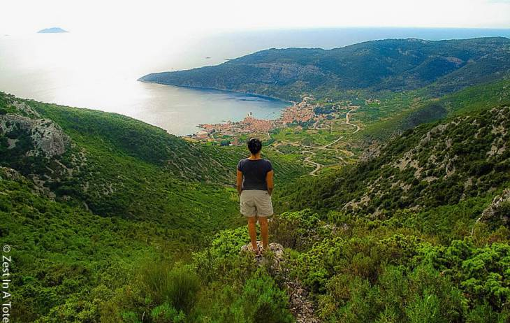 things to do in vis
